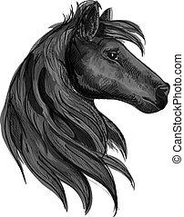 purebred, ló, fekete, jelkép, csődör