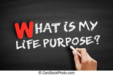 purpose?, mi, tábla, élet, szöveg, az enyém