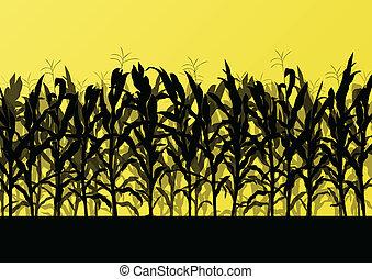 részletes, vidéki táj, gabonaszem, ábra, mező, vektor, háttér, táj
