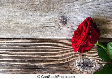 rózsa, felett, erdő, piros