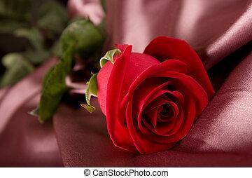 rózsa, selyem, piros
