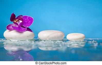 rózsaszínű, élet, serenit, zen, megkövez, ásványvízforrás, fehér, mozdulatlan, orhidea