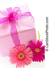 rózsaszínű, doboz, tehetség