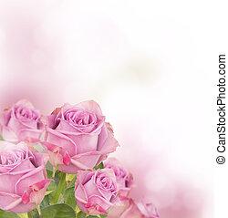 rózsaszínű, hely, csokor, szöveg, szabad, agancsrózsák