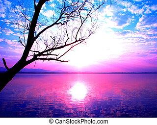 rózsaszínű, kék ég