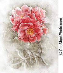 rózsaszínű, mód, grunge, romantikus, háttér., fal, struktúra, vízfestmény, agancsrózsák, flowers., követés, virágos, festmény