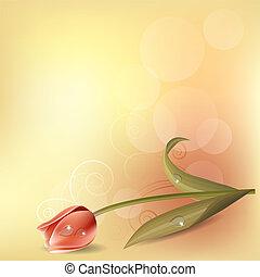 rózsaszínű, pasztell, tulipán, háttér, fény