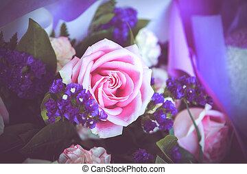 rózsaszínű rózsa, bíbor, csokor