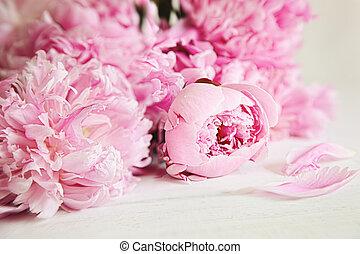 rózsaszínű virág, erdő, felszín, babarózsa