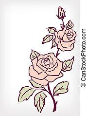 rózsaszínű virág, rózsa, vektor, szüret, kártya