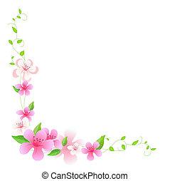 rózsaszínű virág, szőlőtőke