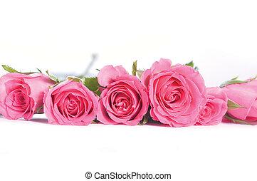 rózsaszín rózsa, csokor