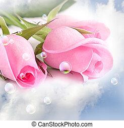 rózsaszín rózsa, elhomályosul