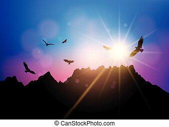 repülés, ég, ellen, körvonal, napnyugta, madarak, 2804