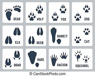 sín, vektor, állhatatos, állat icons