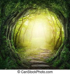 sötét, erdő, út