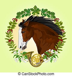 sötét, fej, ló, barna, csődör