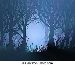 sötét, kísérteties, forest.