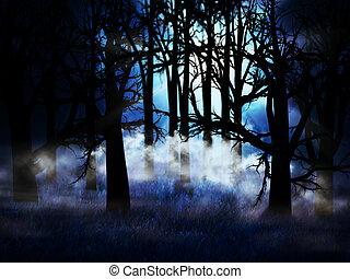 sötét, ködös, erdő