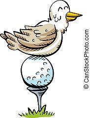 sügér, labda, golf, madár
