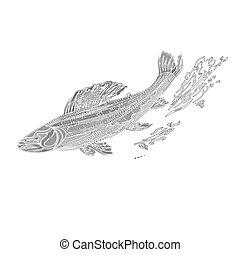 salmonidae, szüret, pisztráng