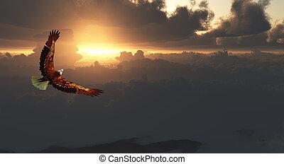 sas, drámai, menekülés, felül, cloudscape