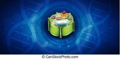 sejt, berendezés, szerkezet