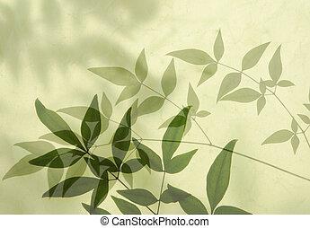 shadows, levél növényen
