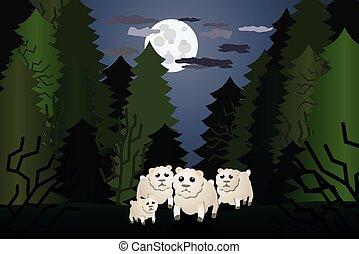 sheep, erdő, lidércnyomás, gyámoltalan, egyedül