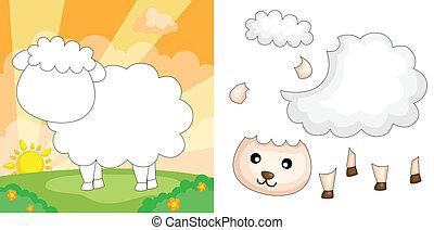 sheep, rejtvény