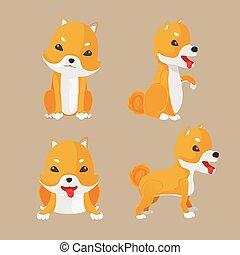 shiba, állhatatos, inu, kutya, vektor, karikatúra