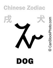 (sign, kutya, zodiac), astrology:, kínai