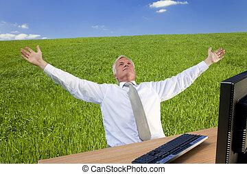 sikeres, mező, zöld, üzletember