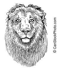 skicc, állatok, oroszlán, fej, fekete, artwork, fehér, rajz