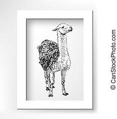skicc, artwork, gyakorlatias, fekete, digitális, állat, láma, rajz
