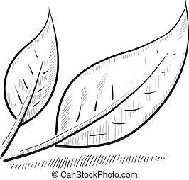 skicc, levél növényen