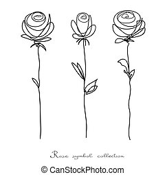 skicc, virág, elszigetelt, gyűjtés, roses., háttér, fehér