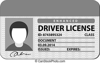 sofőr, engedély