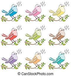 songbirds, éneklés, madarak, színes