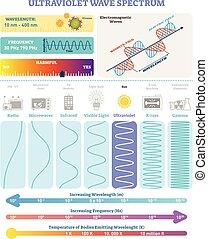 spectrum., frekvencia, lenget, ultraviola, vektor, waves:, structure., hullámhossz, elektromágneses, ábra, ábra, ártalmasság