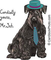 szálkásszőrű német pincsi, furcsa, kutya, vektor, csípőre szabott, karikatúra