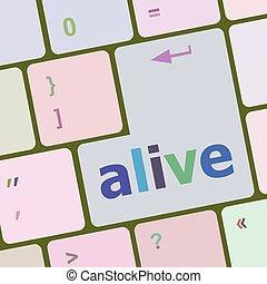 számítógép, szöveg, laptop, ábra, vektor, eleven, kulcs, billentyűzet, gombol