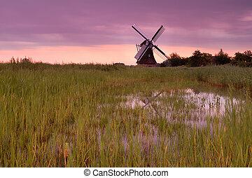 szélmalom, bíbor, napkelte, holland