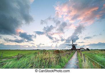 szélmalom, bicikli, reggel, út, holland
