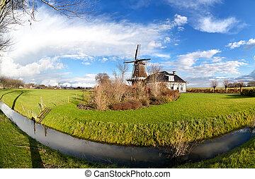 szélmalom, csatorna, legelő, zöld, holland