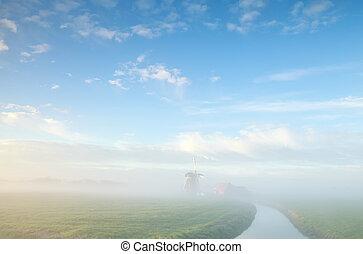 szélmalom, ködös, farmland, holland, reggel