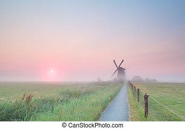 szélmalom, ködös, farmland, holland