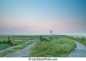 szélmalom, ködös, nyár, vidéki táj, reggel, holland
