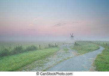 szélmalom, reggel, köd, út, holland