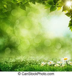 szépség, eco, háttér, reggel, erdő, zöld